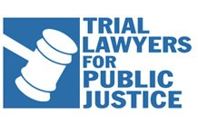 Trial Layer for Public Justice